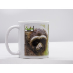 Gibbons and Forests Mug