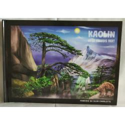 Kaolin et le paradis vert